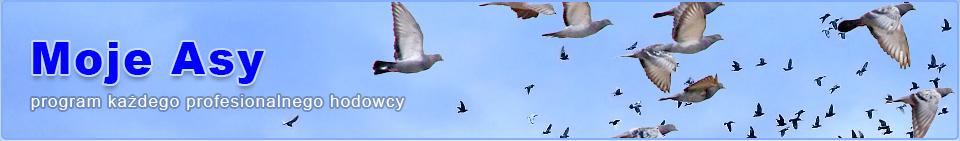 Gołębie pocztowe : Program do hodowli pocztowych gołębi Moje Asy